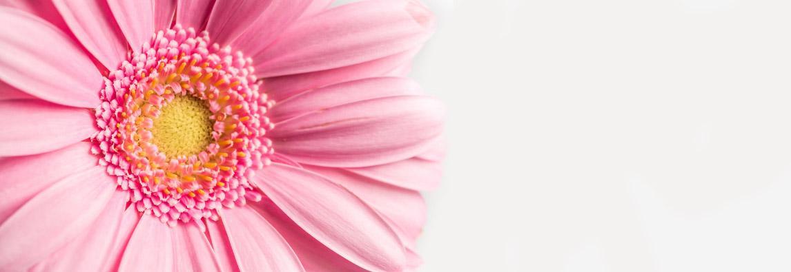 Deja atrás la astenia primaveral